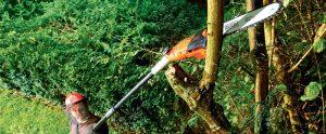Imagem sobre Manobradores de Máquinas Agrícolas e Florestais