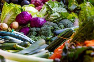 Cultura de hortícolas em modo de produção biológico